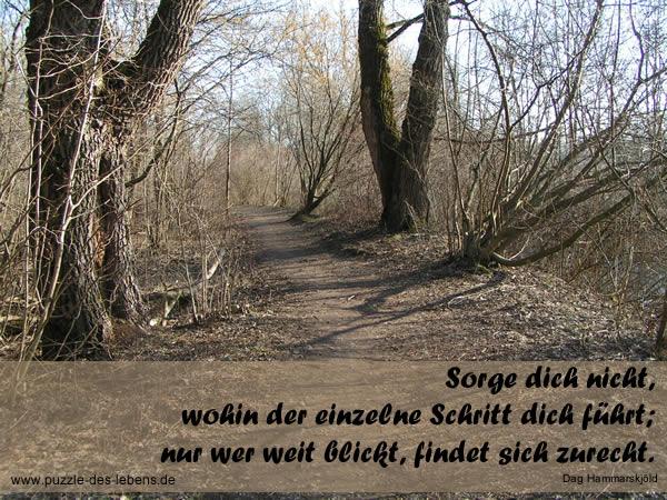 Sorge dich nicht, wohin der einzelne Schritt dich führt; nur wer weit blickt, findet sich zurecht.